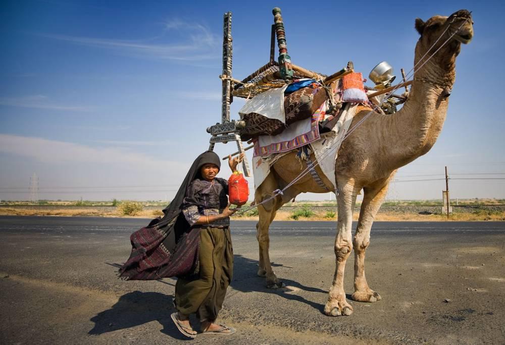Gujarat Travels