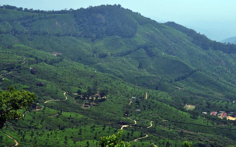 South India With Kerala Tour
