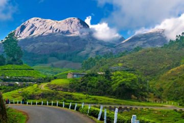 Famous Places to Visit in Munnar