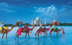 Travel to Fascinating India