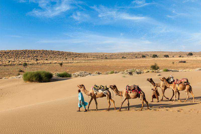 Tips for Traveling in India without knowing English