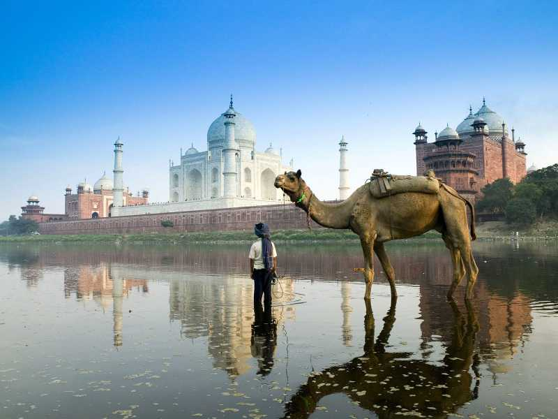 World Famous Bikaner Camel Festival